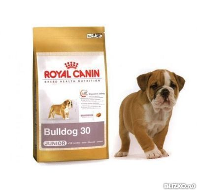 Корм royal canin for bulldogs